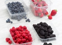 embalagens-alimentar