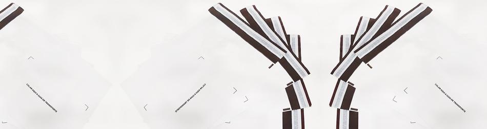 jose neves embalagens envelopes coex